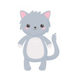 cute gray cat animal standing cartoon isolated vector image vector image