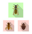 design insect and fly icon collection vector image vector image