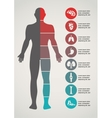 Medical and healthcare background vector image vector image