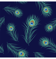 Peacock feather seamless pattern vector image vector image