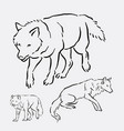 wolf wild animal hand drawing vector image vector image