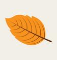 autumn leaf in flat design vector image vector image