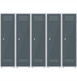 metal cabinets lockers in school or gym vector image