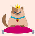 a brown cat princess is sitting on a pillow vector image
