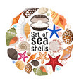 aquatic badge with sea pearl shells vector image vector image