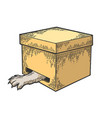 cat in box paw in hole color sketch engraving vector image vector image