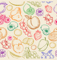 fruits sketch pattern vector image