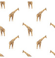giraffe triangle seamless pattern backgrounds vector image vector image