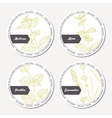 Set of stickers for package design withmelissa vector image