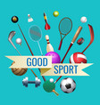 sports goods banner vector image