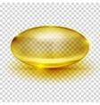 Transparent Capsule Image vector image