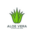 aloe vera icon logo template vector image