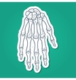 Bones of hand Skeleton part vector image