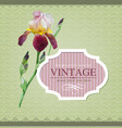 Vintage border iris vector | Price: 1 Credit (USD $1)