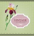 Vintage border iris vector image
