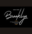 brooklyn usa typography design for t-shirt vector image vector image