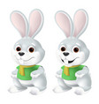 cute easter bunny in yellow scarf and green shirt vector image vector image