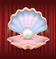 pearl in seashell expensive jewelry in mollusk vector image vector image