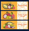 tropical fruits chalk sketch banners set vector image vector image