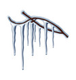 beautiful icicles hanging on a tree branch vector image vector image