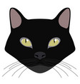 bombay cat avatar cat breeds vector image
