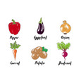 engraved style organic vegetables collection for vector image