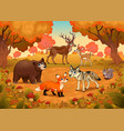 funny animals in wood vector image vector image