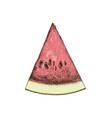 hand drawn watermelon slice vector image