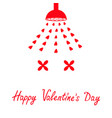 happy valentines day sign symbol red shower bath vector image