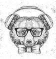 hipster animal bear hand drawing muzzle vector image