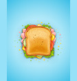 sandwich fried bread vector image vector image