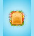 sandwich fried bread vector image