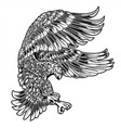 eagle bird drawing wing annimal usa america vector image vector image