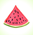 Hand drawn watercolor watermelon vector image