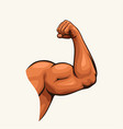 human biceps hand on white vector image vector image