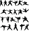 Martial arts silhouettes vector image