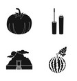 pumpkin mascara and other web icon in black style vector image vector image