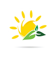 sun icon with leaf color vector image vector image