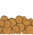 tree rings cut background wood trunk section vector image vector image