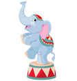 Circus Elephant vector image vector image