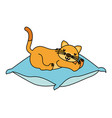 domestic cat sleeping on the cushion vector image vector image