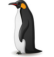 emperor penguin isolated on white vector image vector image