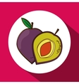 Fruits icon design vector image vector image