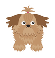 Little glamour tan Shih Tzu dog Isolated vector image