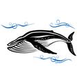 Big black whale in ocean water vector image vector image