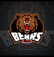 evil and dangerous bear logo template for sports vector image