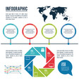 infographic styles and organization vector image