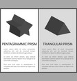 pentagrammic and triangular prism solid figures vector image vector image