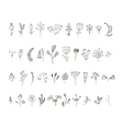 set 40 hand drawn line flowers and vector image vector image