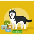 cartoon of Husky with food bowl vector image